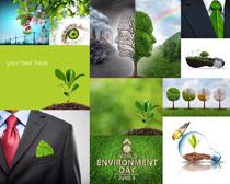 商务与环保生物摄影时时彩娱乐网站