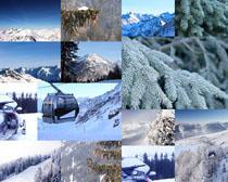 自然雪景拍摄高清图片