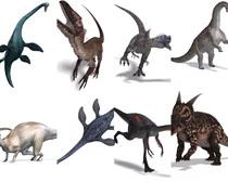 3D恐龙动物摄影时时彩娱乐网站