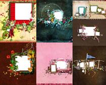 装饰花朵相框摄影高清图片