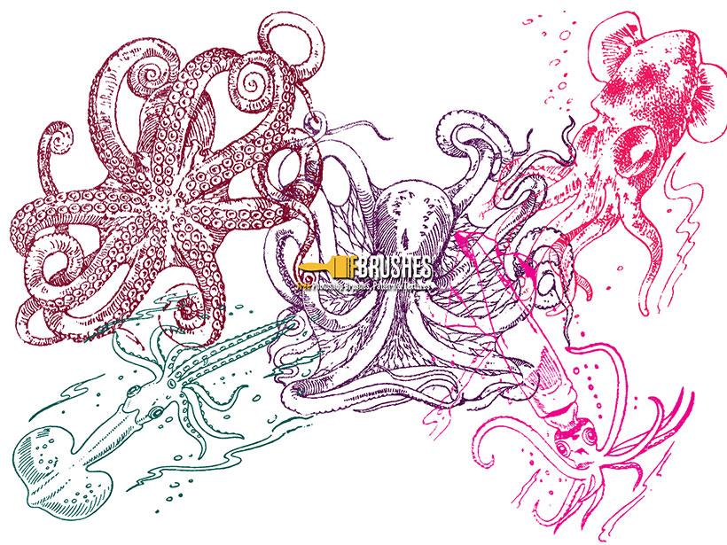 手绘海洋动物笔刷