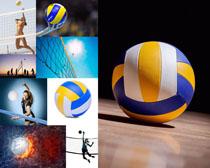排球体育运动摄影高清图片