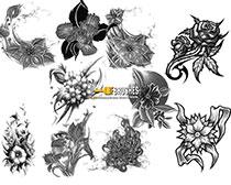纹身花纹图案ps笔刷素材