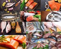 三文鱼海鱼摄影高清图片