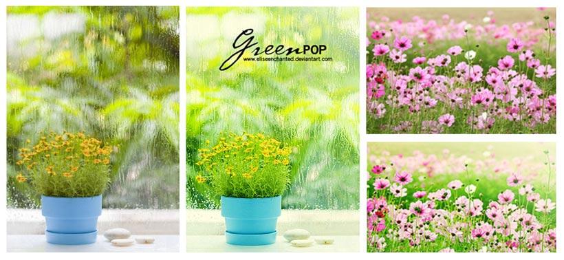 鲜花花卉清新效果PS调色动作