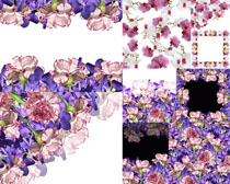花朵相框布置摄影高清图片