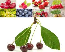 新鲜水果拍摄摄影高清图片
