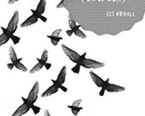 鸟群笔刷素材