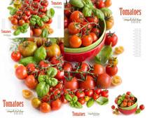 西红柿封面摄影高清图片