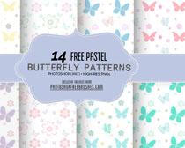 漂亮的蝴蝶填充圖案