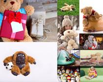 玩具熊拍摄高清图片