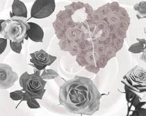 玫瑰花花卉笔刷
