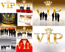 VIP商务摄影高清图片