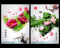 中国风花朵广告背景设计PSD素材