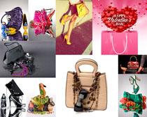 时尚女士包包摄影高清图片