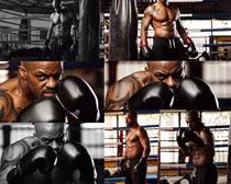 拳击运动员拍摄高清图片