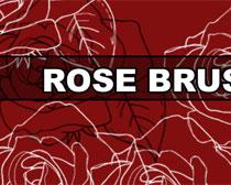 线稿玫瑰花笔刷