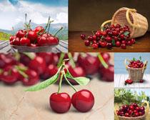 鲜红大樱桃摄影高清图片