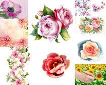 水墨花朵背景摄影高清图片