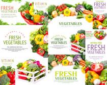 蔬菜封面摄影高清图片