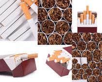 烟草与香烟摄影高清图片