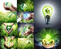 环保生态植物摄影高清图片