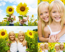 向日葵国外姐妹摄影高清图片