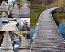 树木与桥梁摄影高清图片