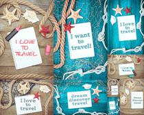 小卡片与海星摄影高清图片