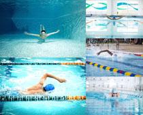 游泳的人物摄影高清图片