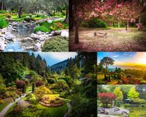 美丽的园林景观摄影高清图片