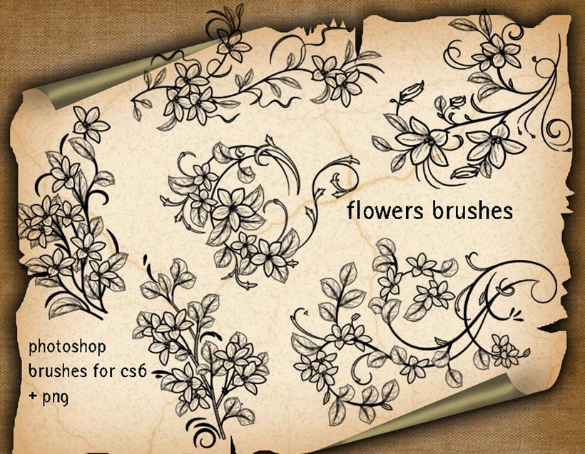 手绘植物花卉笔刷素材