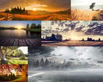 唯美的自然风光摄影高清图片