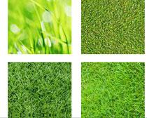 绿色青草PS填充图案