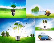 环保绿色灯泡摄影高清图片