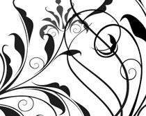 线条花卉PS笔刷素材
