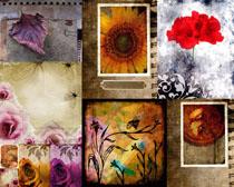 艺术底纹花朵摄影高清图片