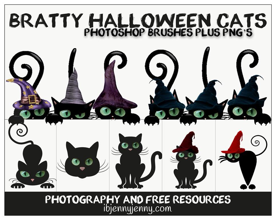 可爱黑猫笔刷 - 爱图网设计图片素材下载