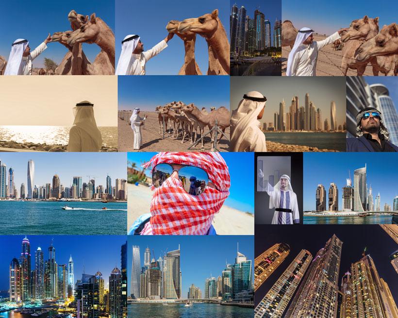 城市风光建筑设计骆驼动物
