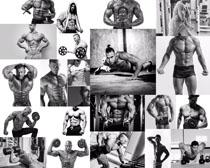 健身肌肉男拍摄高清图片