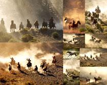 奔跑的马拍摄时时彩娱乐网站