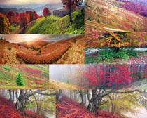 美丽的风景摄影高清图片