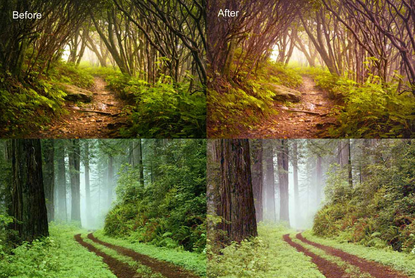 森林照片柔美效果PS调色动作