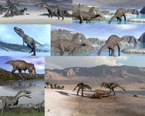 恐龙时代动物摄影时时彩娱乐网站