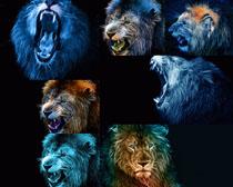 炫彩绘画狮子摄影时时彩娱乐网站