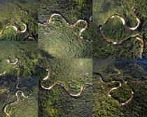 树木弯路摄影高清图片