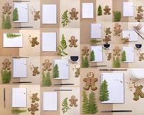 小熊饼干与纸张摄影高清图片