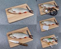 鱼与刀具摄影高清图片