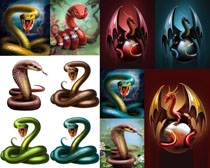 手绘画动物色彩摄影时时彩娱乐网站