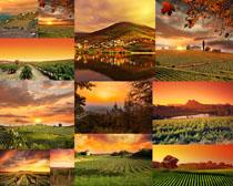 美丽的庄园摄影高清图片